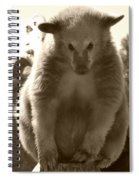 Let Me Think About It Spiral Notebook