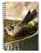 Let The Water Fly Spiral Notebook