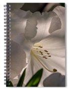 Shining Through The Darkness - Flower Art Spiral Notebook