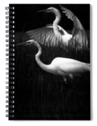 Let's Just Wing It Spiral Notebook