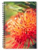Resolution Spiral Notebook