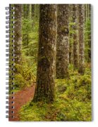 Lewis Falls Trail 2 Spiral Notebook