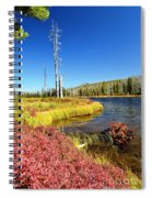 Lewis River Fall Spiral Notebook