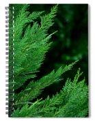 Leyland Cypress Green Spiral Notebook