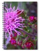 Liatris Ligulistylis Bunch Spiral Notebook
