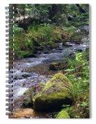 Liberty Creek 2014 #3 Spiral Notebook