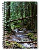 Liberty Creek 2014 #5 Spiral Notebook
