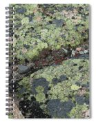 Lichen And Granite Img 6187 Spiral Notebook