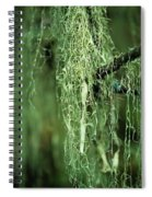 Lichen Hangs From A Tree  Corvallis Spiral Notebook