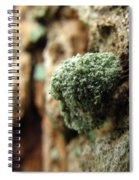 Lichen Mimic Spiral Notebook