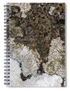 Lichen Mosaic Spiral Notebook