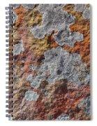 Lichen On Sandstone Spiral Notebook