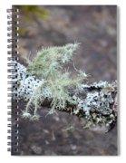 Lichens 2013 Spiral Notebook