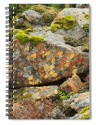 Lichens And Moss In Glen Strathfarrar Spiral Notebook