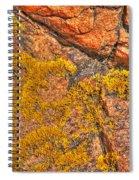 Lichens On The Shoreline Rocks 2 Spiral Notebook