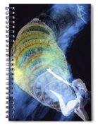 Life Cycle Spiral Notebook