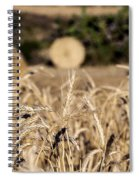 Life Cycle Of Wheat - Harvesting Spiral Notebook