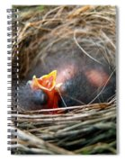Life In The Nest Spiral Notebook