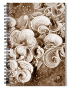 Life On The Rocks In Sepia Spiral Notebook
