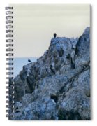 Life On The Rocks Spiral Notebook