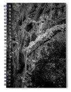 Life Remains Spiral Notebook