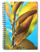 Life Underwater 1 Spiral Notebook