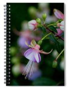 Life's Quiet Moments Spiral Notebook