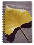 Life's Treasures  Spiral Notebook