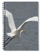 Lift Off - Egret 2013 Spiral Notebook