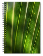 Light Filter Spiral Notebook