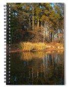 Light From The Golden Hour Spiral Notebook