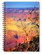 Light In The Canyon Spiral Notebook