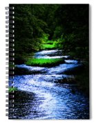 Light In The Creek Spiral Notebook