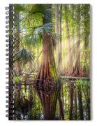 Light In The Hammock Spiral Notebook