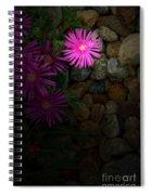 Light In The Rock Garden Spiral Notebook