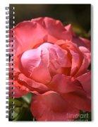 Light On Rose Spiral Notebook