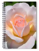 Light Pink Rose Spiral Notebook