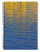 Light Reflections On The Water Spiral Notebook