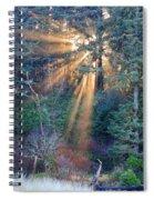 Light Shine Spiral Notebook