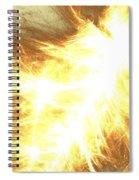 Light Spark Spiral Notebook