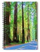 Light Through The Redwoods Spiral Notebook