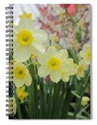 Light Yellow Daffodils Spiral Notebook