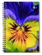 Lightburst Spiral Notebook