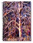 Lightening Struck Tree Spiral Notebook