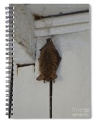 Lighthouse Bat Spiral Notebook