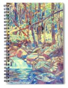 Lighting The Creek Spiral Notebook