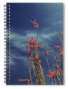 Like Flying Amongst The Clouds Spiral Notebook