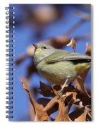 Lil' Bit - Orange-crowned Warbler Spiral Notebook