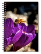 Lil' Buzzer Spiral Notebook