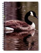 Lila Queen Of The Pond Spiral Notebook